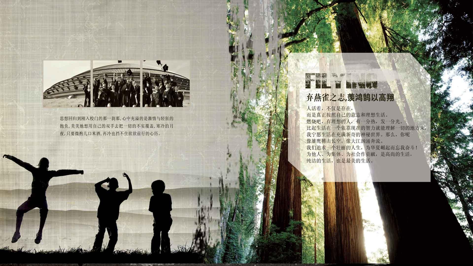 header-banner-image